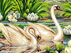 Картина по номерам Babylon Лебеди и лотосы (VK129) 30 х 40 см