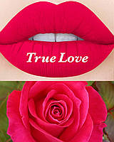 Лимитка Lime crime velvetines TRUE LOVE