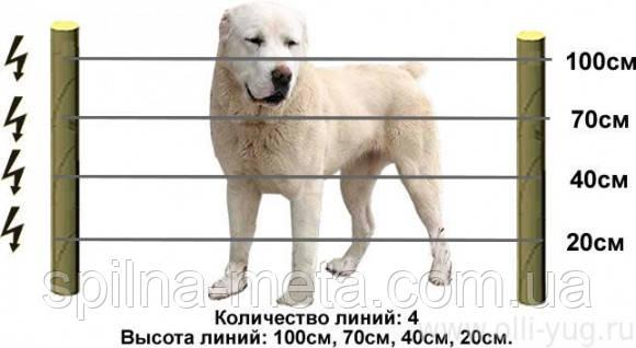 Электропастух для собак и котов (комплект на 125 м)