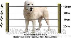 Електропастух для собак і котів (комплект на 125 м)