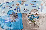 Детские колготки на мальчика для новорожденных Zoloto A206-R