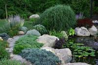 Озеленение и благоустройство участка