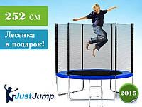Батут Just Jump 252 см с сеткой и лесенкой, фото 1