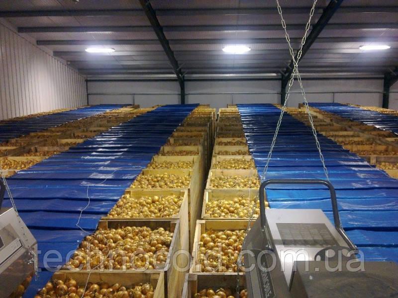 """Овощехранилище. Оборудование для хранения лука MOOIJ (Голландия) - ООО """"Техноколд"""" в Днепре"""