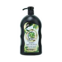 Шампунь для сухих волос GALLUS с оливковым маслом 1 л