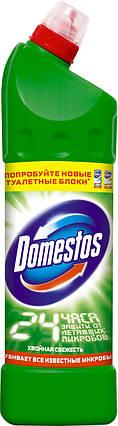 Domestos универсальное чистящее средство Хвойная свежесть 1 л , фото 2