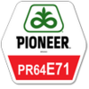 Семена подсолнечника Пионер ПР64Е71
