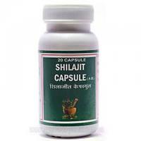 Шиладжит Пунарвасу - 100% мумие - 20 капсул - Биостимулятор неспецифического действия