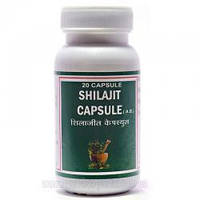 Шиладжит Пунарвасу - 100% муміє - 20 капсул - Біостимулятор неспецифічного дії