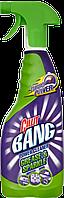 CILLIT BANG Универсальное средство для удаления жира с распылителем 750 мл