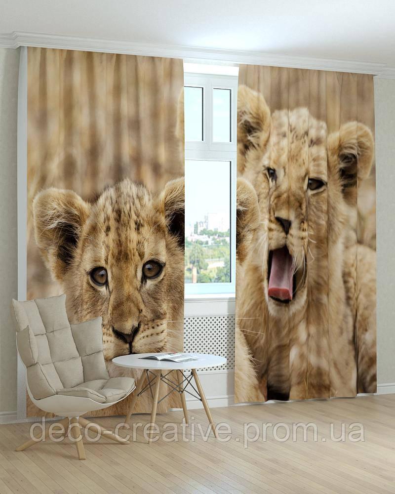 Фотошторы дикая природа львицы
