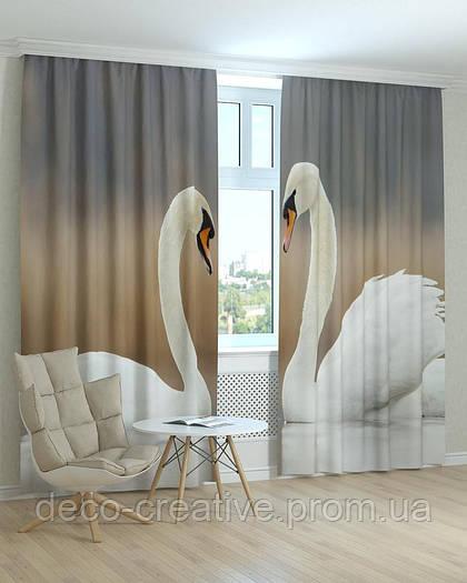 Фотошторы влюбленные лебеди