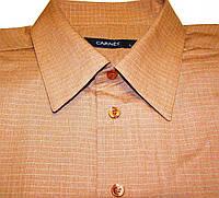 Рубашка CARNET (L / 41-42), фото 1