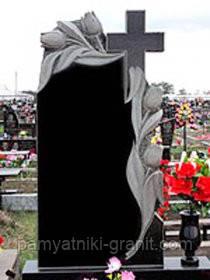 Пам'ятники Житомир (Зразки №251)