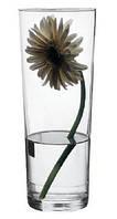 Ваза из стекла Flora Артикул: 43177