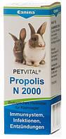 Витамины Canina Petvital N 2000 Propolis для улучшение работы иммунной системы грызунов, 10 гр (драже)