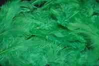 Перья цветные (размер упаковки 20Х11 см) 30/25 (цена за 1 шт.+5 грн)