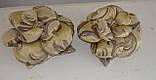 Подушка РОЗА золото с шоколадом, фото 3