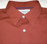Рубашка Croft&Barrow (L), фото 2