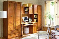 В Шкаф комбинированный - 80 Севилла  (БРВ-Украина ТМ), фото 3