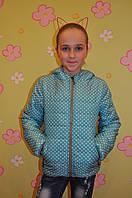 Куртка-ветровка мята + мелкий горох (128-152см)