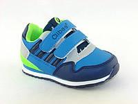 Детская обувь кроссовки Clibbe арт.TS-F-557 Син+солат (Размеры: 31-36)