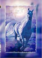 """Схема для вышивки бисером на подрамнике (холст) """"Белая лошадь"""""""