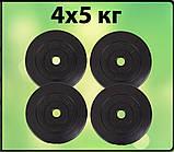 Диски для штанги 4х5 кг, фото 2