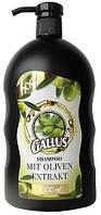 Шампунь с экстрактом оливы Gallus Shampoo Oliver 1л Галлус оливка
