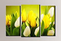 "Модульная картина на холсте ""Желтые тюльпаны"""