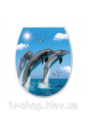 Сидение для унитаза Дельфины, Elif
