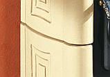 Печь-Камин La Nordica  Gaia Forno, фото 5