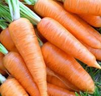 КУРОДА - семена моркови, 500 грамм, Lark Seed, фото 1