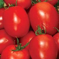 РИО ФУЕГО - семена томата детерминантного, 500 грамм, Lark Seed, фото 1