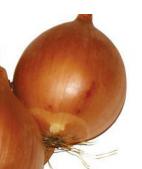ИМПЕРИОС F1 (ДАМЛА F1)  - семена лука репчатого, 100 000 семян, Lark Seed, фото 1