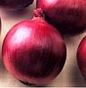 РЕД ЛАКИ F1 - семена лука репчатого красного, 100 000 семян, Lark Seed