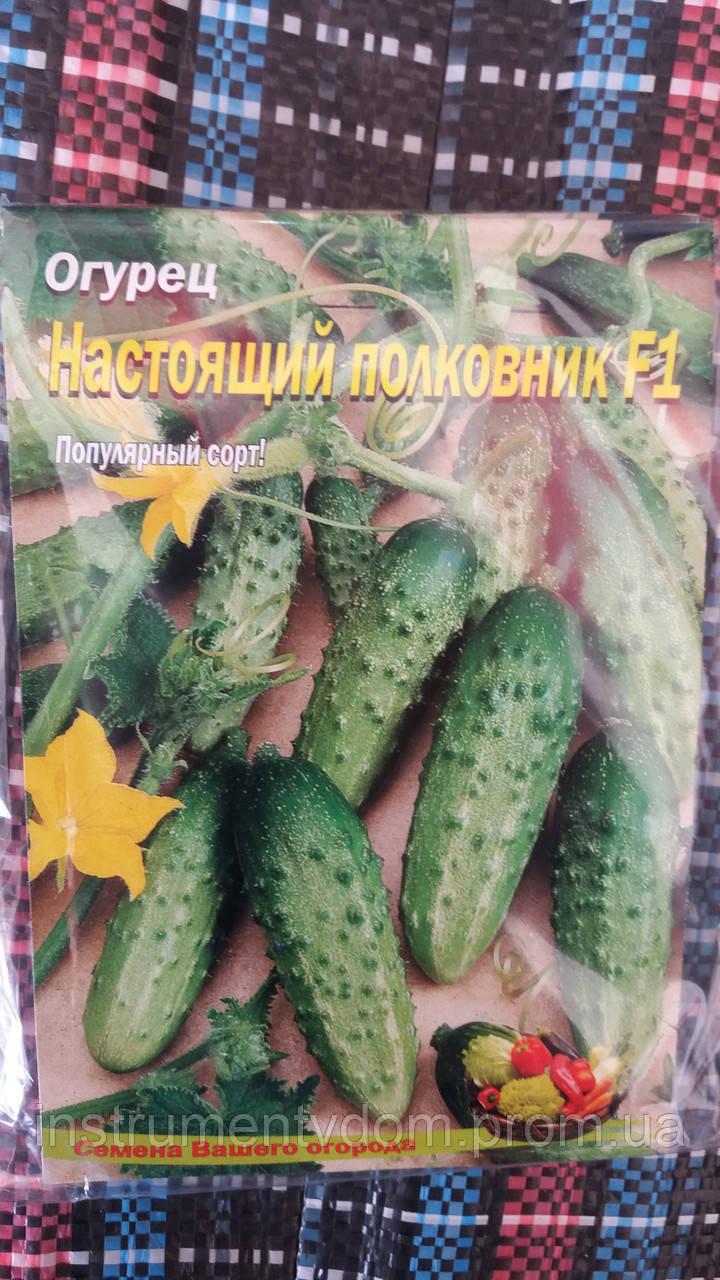 """Семена огурцов """"Настоящий полковник F1"""", 5 г  (упаковка 10 пачек)"""