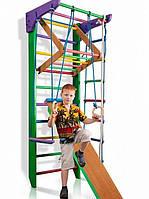 Детский спортивный уголок «Робин Гуд 3-220», фото 1