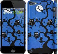 """Чехол на iPod Touch 5 Совы на дереве """"2374c-35"""""""