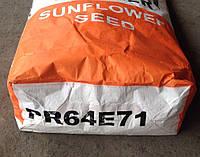 Гибрид подсолнечника Пионер ПР64E71 ЭкспрессСан™ (Pioneer PR64E71)