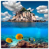 Скинали Остров рыбы - стекло с фотопечатью