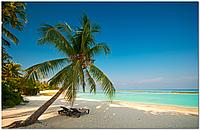 Скинали Пальма Пляж - стекло с фотопечатью