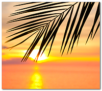 Скинали Закат Море - стекло с фотопечатью