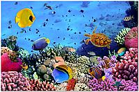Скинали Рыбы, печать на стекле - стекло с фотопечатью