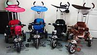 Новое поступление детских трехколесных велосипедов Lexus Trike KR01-А с дополнительной подножкой на больших надувные колесах