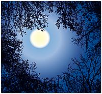 Подвесной потолок - Акриловый потолок Луна
