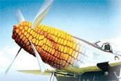 Семена кукурузы «СИНГЕНТА» AROBASE АРОБАЗ ФАО 250 STANDARD