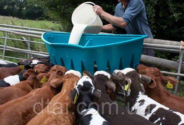 Заменитель молока для выпойки теленка