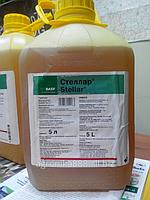 Гербицид СТЕЛЛАР® Топрамезон (50 г/л) + дикамба (160 г/л)  компании BASF(БАСФ) Германия, фото 1