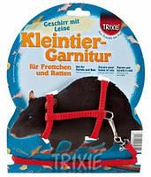Шлейка с поводком для хорьков и крыс Trixie 6262 (12-25 см/8 мм)